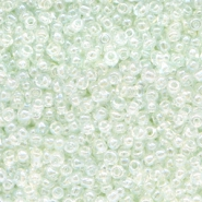 Glasperlen Rocailles 12/0 (2mm) Crystal